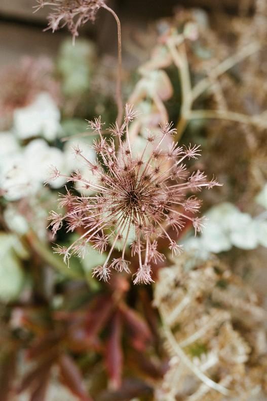 tendance mariage fleurs séchées alsace fleuriste