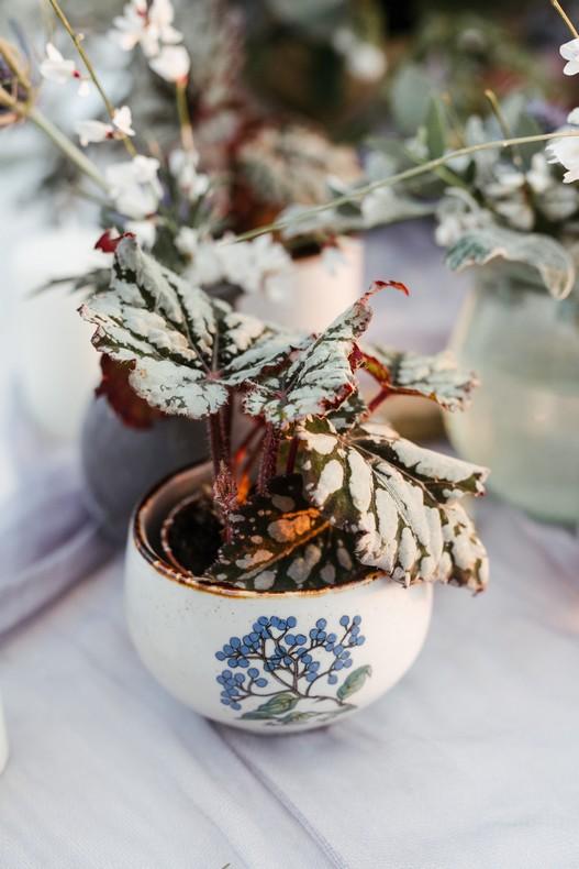 plante feuillage mariage hiver fleuriste capucine atelier floral
