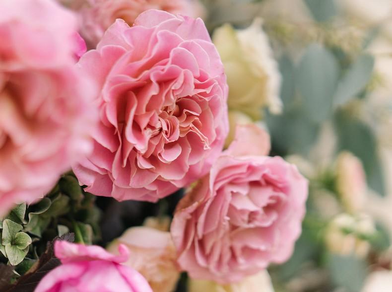 rose de jardin fleuriste mariage bas rhin couleur pastel